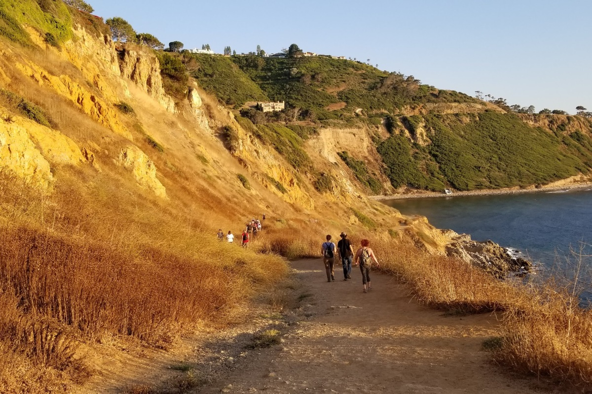 Palos Verdes Hikers with Golden Cliffs and Ocean - Judy Herman